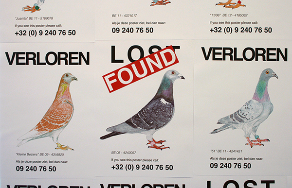 Pilvi Takala - Lost Pigeons - Posters en telefoon (detail)
