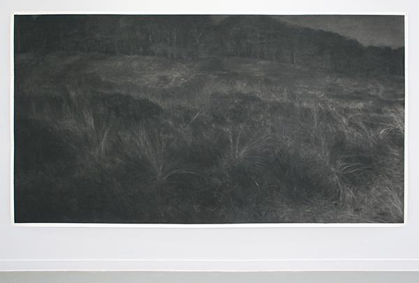 Renie Spoelstra - Land #2 - Houtskool op papier