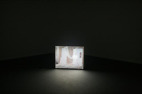 Sarah & Charles - Untitled (Lightbox) - 100x125cm Lichtbox en dia