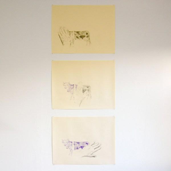 Sven Sachsalber - Milka Cow - 50x65cm Potlood en kleurpotlood op papier, serie van drie