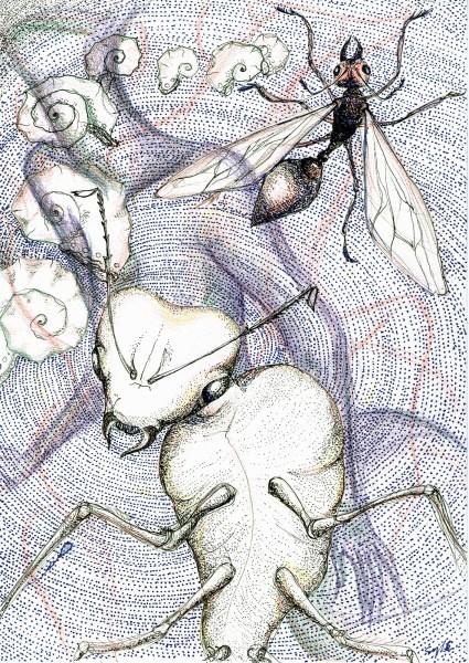 Sylé van Olst - Queens - 21x30cm Pen en potlood op papier, 2015