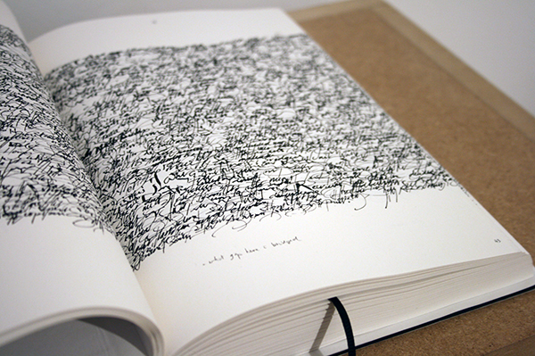 Toon van Borm - The Fields, 12 notes on clarity - Boek met annotatie