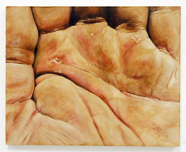 Willem Sanders - The Hand of the Artist after Gardening #07 - 40x50cm Olieverf op MDF