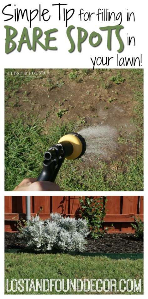 simple-tip-for-filling-in-bare-spots-in-grass