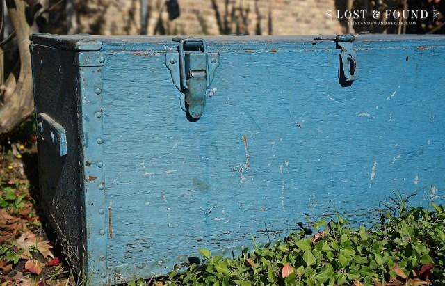 bluetrunk