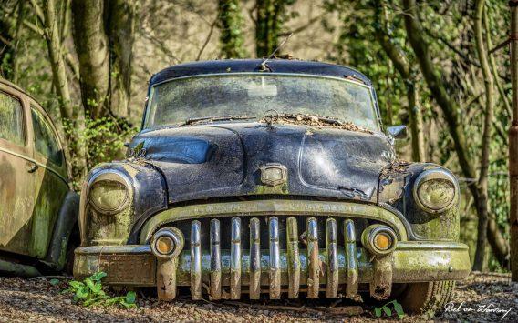 Car-Graveyard-53.jpg