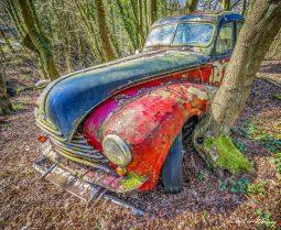 Car-Graveyard-7.jpg