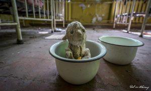 Chernobyl-12.jpg