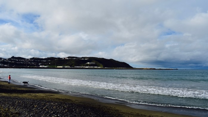 Lyall_Bay_Where_to_live_in_Wellington