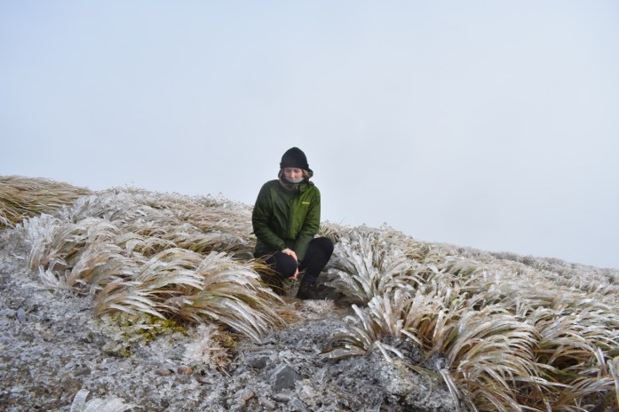 Josie Kime Hut Tararuas