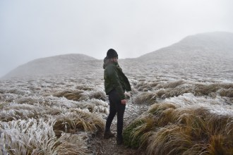 Kime Hut Hike Tararuas Tramping NZ