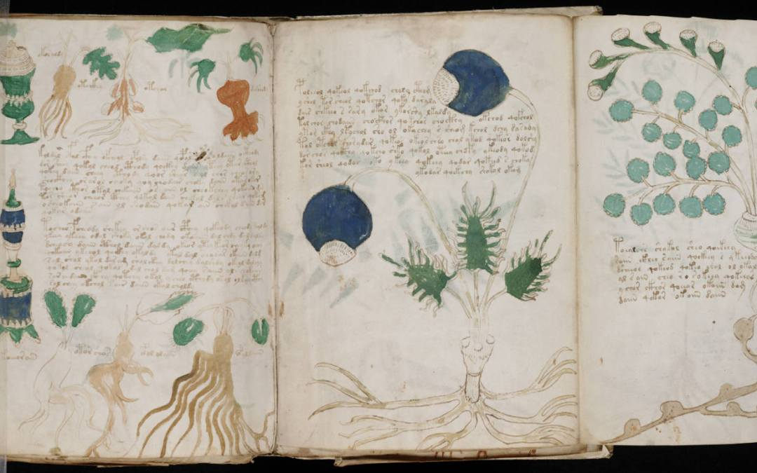 Wednesday Writing Hook #7:  The Voynich manuscript