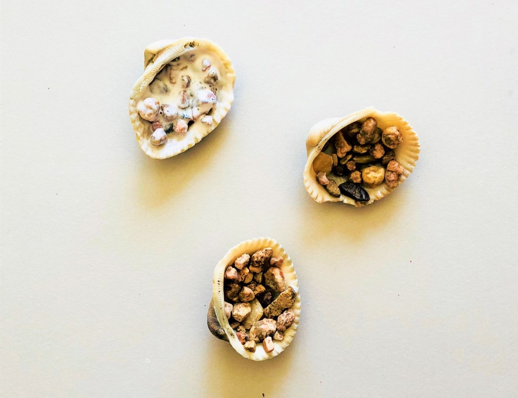 DIY seashell geodes
