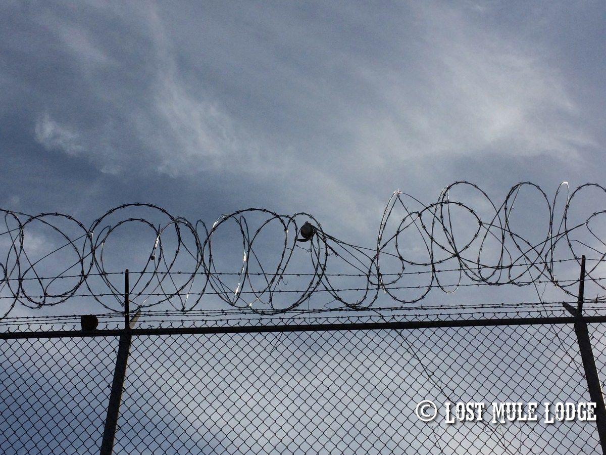 The Day We Went to Prison - Part II