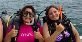 scuba diving course key west florida - Home