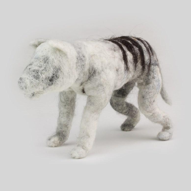 thylacine-ghost-iv-myth