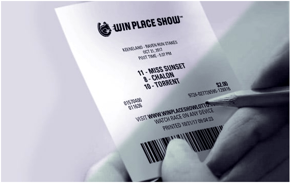 WIn Palace Show- How to play Equilottery