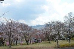 磯部桜川公園からの眺望