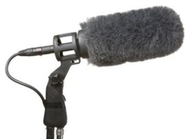 Microphone and boom