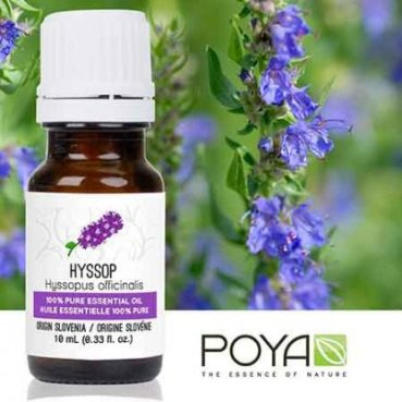 Poya-hyssop-10-ml-bg-416x416