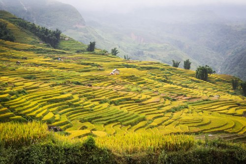 North West Vietnam Photo Tour