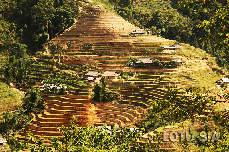 14 Day Off The Beaten Track North Vietnam Trekking Tour