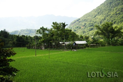 Best 3 Day North Vietnam Family Vacation