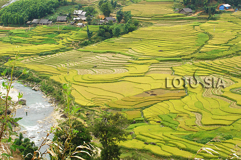 Vietnam Sapa Tour Half Day from Topas Ecolodge