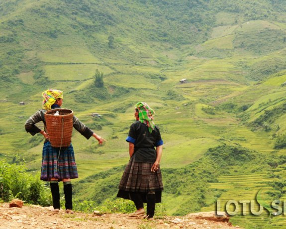 Best 4 Day Yen Bai Northern Vietnam Tour