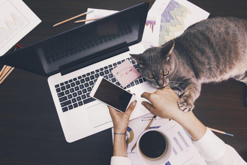 thuiswerken eenzaam 5 tips