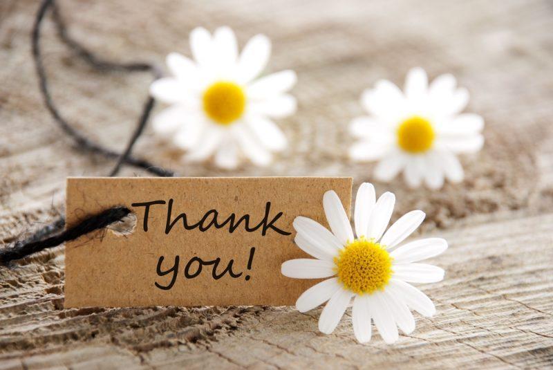 bedank de blogger tag
