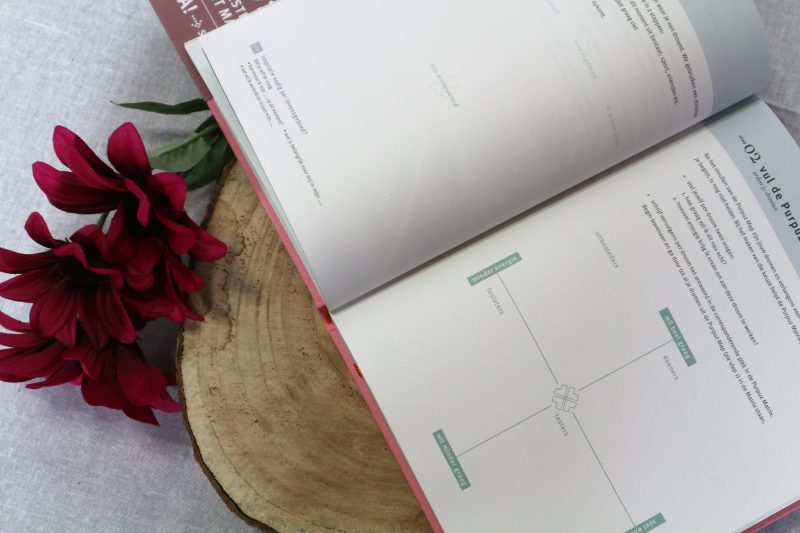Purpuz Planner PINK 2019 review