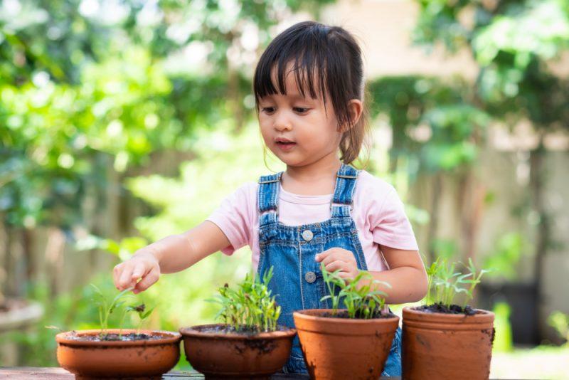 kindvriendelijke tuin tips en inspiratie