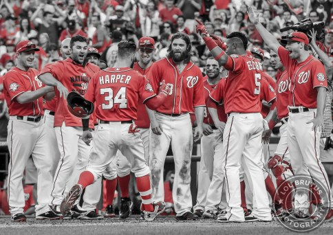 BRUTUS-MLB-34