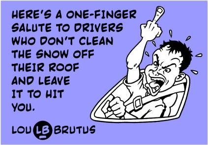 BRUTUS-SNOW-WINDSHIELD-WEB