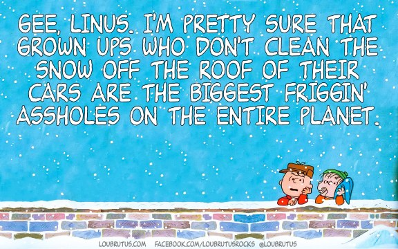meme-peanuts-snow-car-roof-web