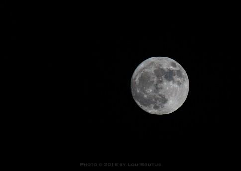 moon-111316-002-web