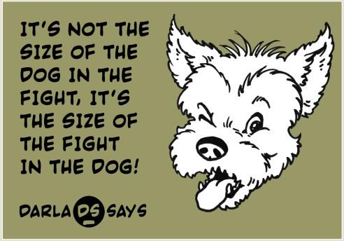 DARLA-SAYS-DOG-IN-FIGHT