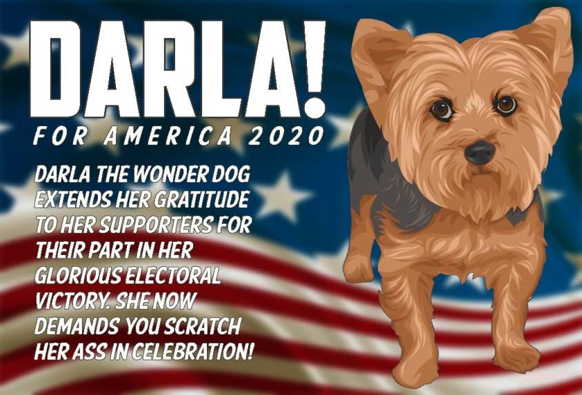 darla-election-03-celebration