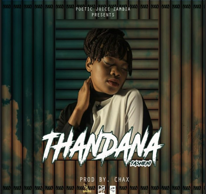 Tandana-Official-Artwork