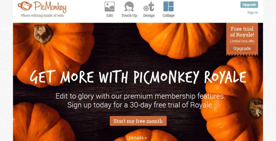 PicMonkey Image editor tool
