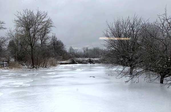 Ice Storm in Ontario Canada