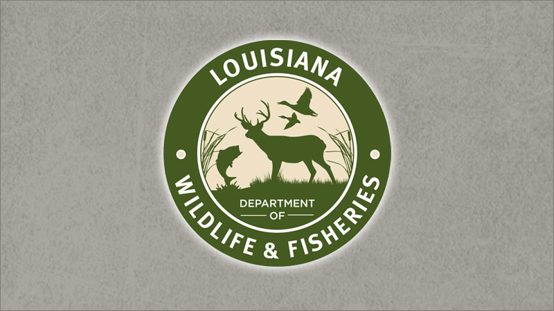 Agents investigating a double boating fatality in Caldwell Parish