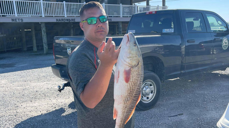 Lake Borgne redfish