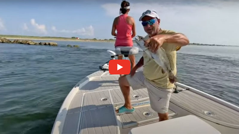 Summer day specks, redfish and mangrove snapper