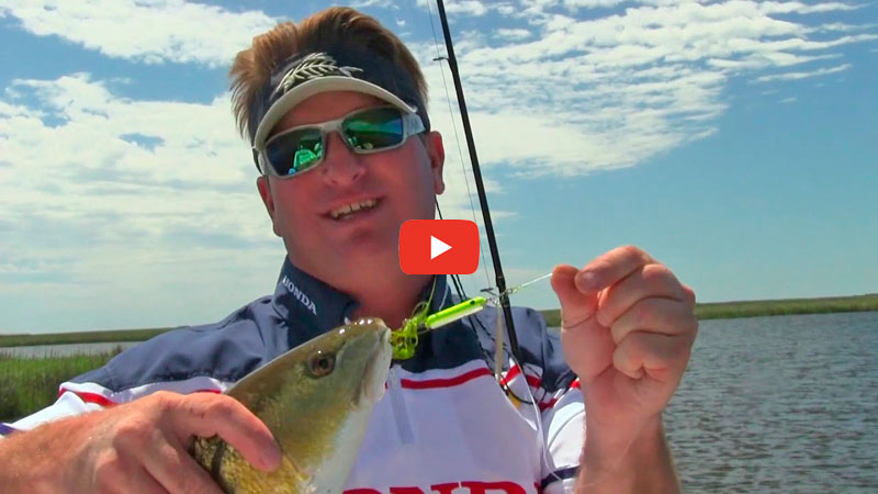 Using inline spinnerbaits to catch more fish