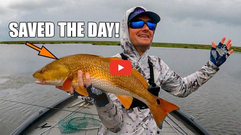 """""""Plan Redfish"""" saves the day"""