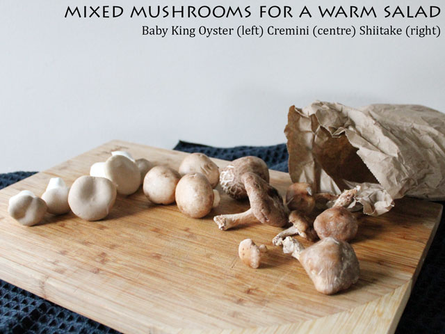 mixed-mushrooms-for-a-warm-salad-baby-king-oyster-cremini-shiitake