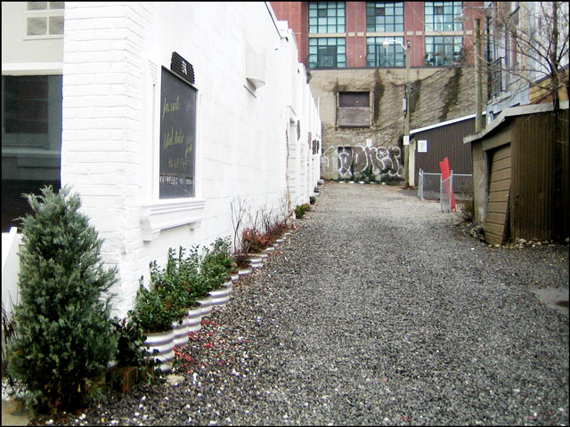 alleyway-planted-with-holly