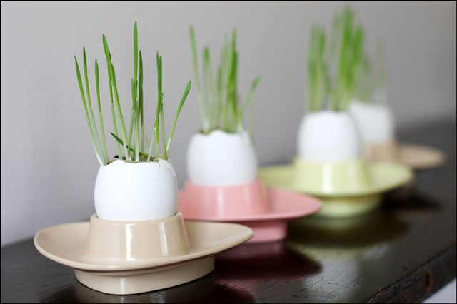Eggshell Planters in Melmac Eggcups